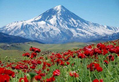کوهها آبانبارهای ایران هستند/ وجود تنوع زیستی ارزشمند در کوهستان